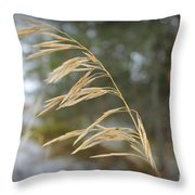 Single Stalk Throw Pillow