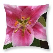 Single Stargazer Lily Throw Pillow