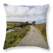 Single Track Road Throw Pillow
