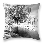 Single Tree Aginst The Sun Throw Pillow