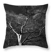 Single Tree With New Spring Leaves In Black And White Throw Pillow