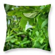 Single Trumpet Throw Pillow