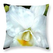 Single White Cattleya Orchid Throw Pillow