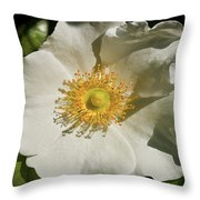 Single White Rose Db Throw Pillow