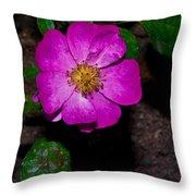 Single Wild Rose Throw Pillow