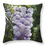 Single Wisteria  Throw Pillow