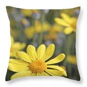 Single Yellow Daisy Throw Pillow
