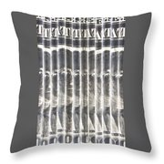 Singles In Silver Throw Pillow