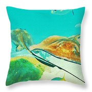 Singray City Cayman Islands Two Throw Pillow