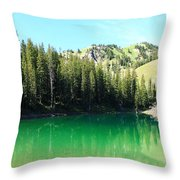 Sink On In Throw Pillow