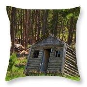 Sinking Cabin Throw Pillow