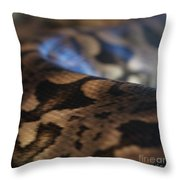 Sinti Hilha - 2 Throw Pillow