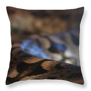 Sinti Hilha Throw Pillow