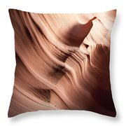 Sinuous Shapes Throw Pillow