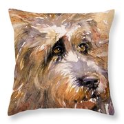 Sir Darby Throw Pillow