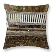 Sit A Spell Throw Pillow