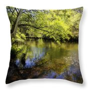 Sitting By The Creek  Throw Pillow