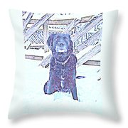I'm Sitting By The Old Fence Waiting For You  Throw Pillow