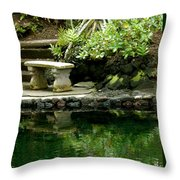 Sitting By The Pond Throw Pillow