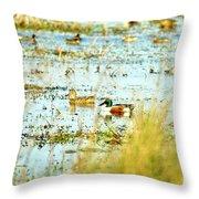 Sitting Ducks Throw Pillow