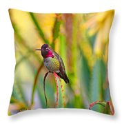 Sitting In The Succulents Throw Pillow