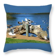 Sitting On A Log In The Bay Throw Pillow