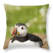 Sitting Puffin Throw Pillow