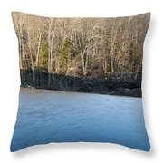 Situate Dam Throw Pillow