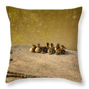 Six Ducklings In A Row Throw Pillow