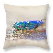 Six-spotted Tiger Beetle - Cicindela Sexguttata Throw Pillow