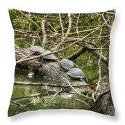 Six Turtle On A Log Throw Pillow