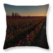 Skagit Dusk Tulip Fields Throw Pillow