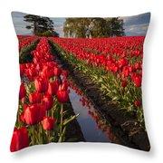 Skagit Glorious Day Throw Pillow