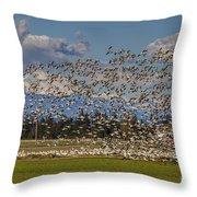 Skagit Snow Geese Liftoff Throw Pillow