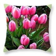 Skagit Valley Tulips 9 Throw Pillow