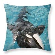 Skana Orca Vancouver Aquarium Pat Hathaway Photo1974 Throw Pillow