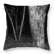 Skc 2975 Thick And Thin Throw Pillow