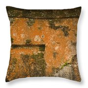 Skc 3277 Abstract By Age Throw Pillow