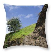 Skc 3559 Conditions In Contrast Throw Pillow