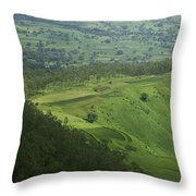 Skc 3566 The Gamut Of Green Throw Pillow