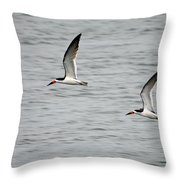 Skimmers On The Prowl Throw Pillow