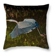 Skimming Great Heron Throw Pillow