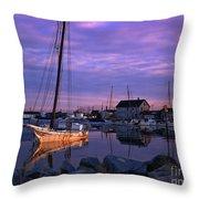 Skipjack Throw Pillow
