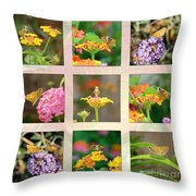 Skipper Butterfly Collage Throw Pillow