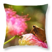 Skipper Butterfly On Mimosa Flower Throw Pillow