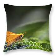 Skipper Butterfly On Mimosa Leaf Throw Pillow