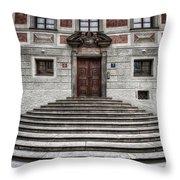 Skirted Door Throw Pillow