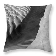 Skn 1426 The Highlights And Shadows Throw Pillow