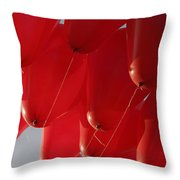 Skc 0029 Unity In Flying Throw Pillow