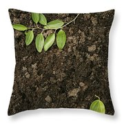 Skc 0091 Fallen And Separated Throw Pillow